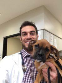 Профилактика заболевания у ветеринара