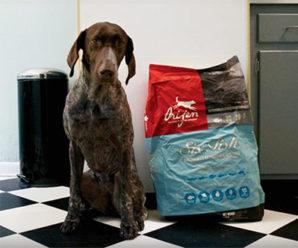 Корм для собак Orijen: обзор состава, разновидности и отзывы собаководов