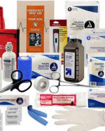 Медикаменты и оборудование для принятия родов у собаки