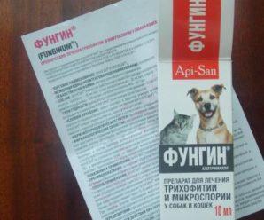 Применение «Фунгина» при лечении кожных заболеваний у собак