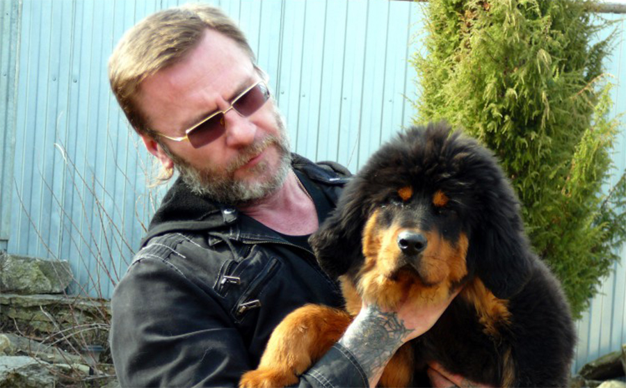 Отзывы владельца собаки о корме Фаворит для собак
