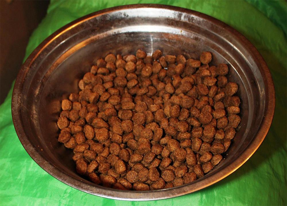 Корм для собак Эукануба в миске
