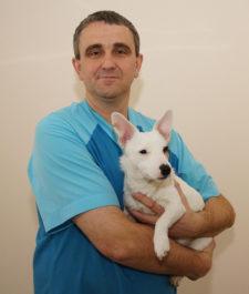 Отзывы ветеринаров о корме для собак Husse