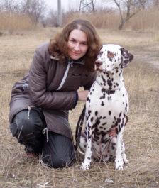 Далматинец с хозяйков, отзыв о собаке