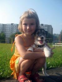 Отношения джек-рассел-терьера в семье и детям