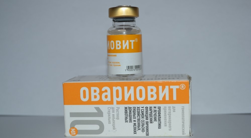 Состав препарата Овариовит