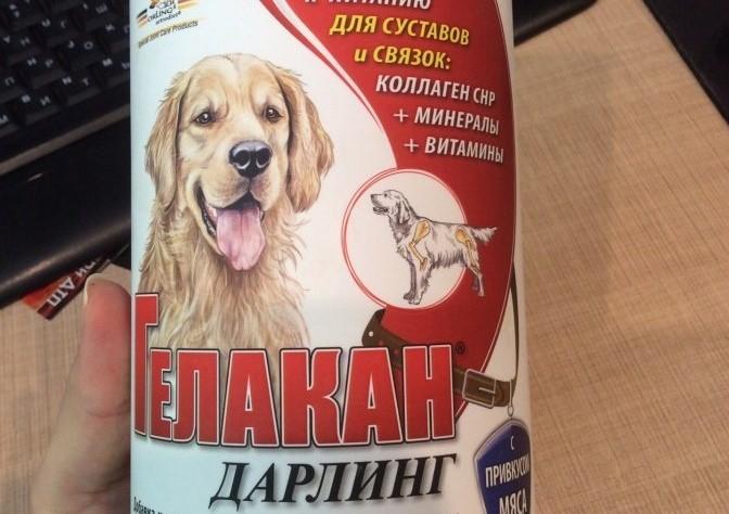 Что колют собакам для суставов