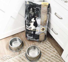 Отзывы собаководов о корме Нутрам для собак