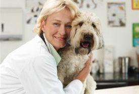 Ветеринары о Нашей Марке