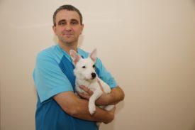 Корм для собак Органикс: состав, отзывы ветеринаров и владельцев собак