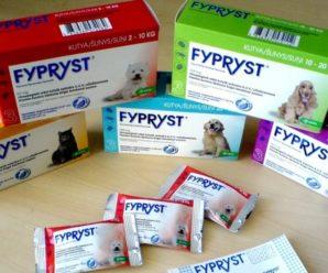 Фиприст: эффективный препарат от блох, клещей и власоедов у собак
