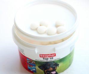 Необходимые витаминные комплексы для немецких овчарок: от малышей до пожилых