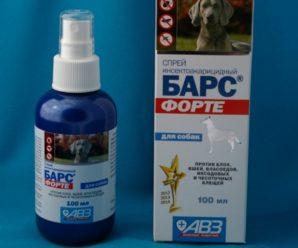 Барс Форте для собак — серия препаратов от клещей, блох, грибков и опасных микроорганизмов