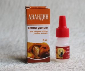 Препарат для собак Анандин (инъекции, мазь, капли): показания к назначению
