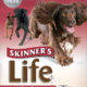 Корма для собак Skinner's: обзор видов и отзывы покупателей