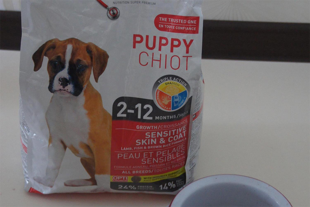 1st Choice (ФестЧойс) корм для собак