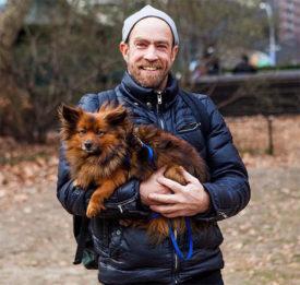 Отзывы собаководов о корме Ориджен для собак