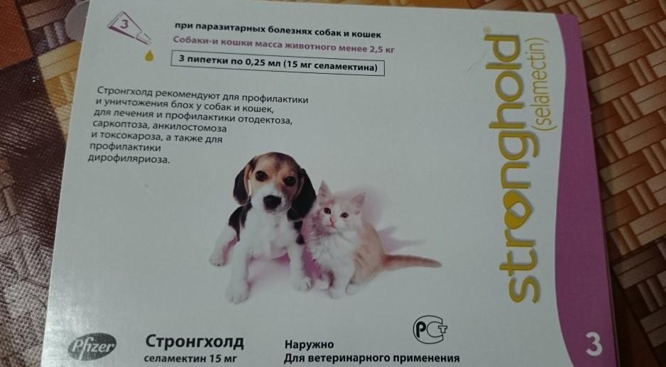 Строгнхолд для собак
