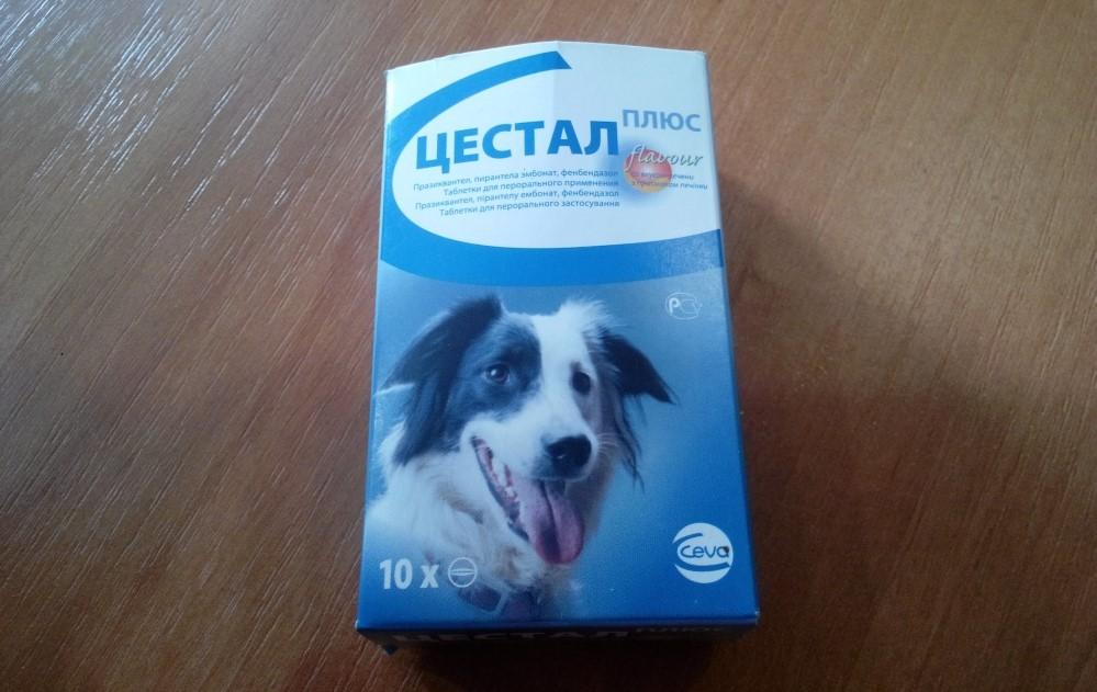 Цестал для собак