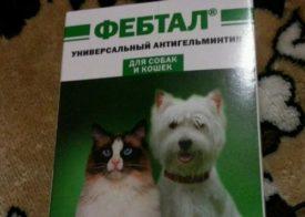 Фебтал комбо инструкция