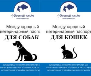 Что такое ветеринарный паспорт
